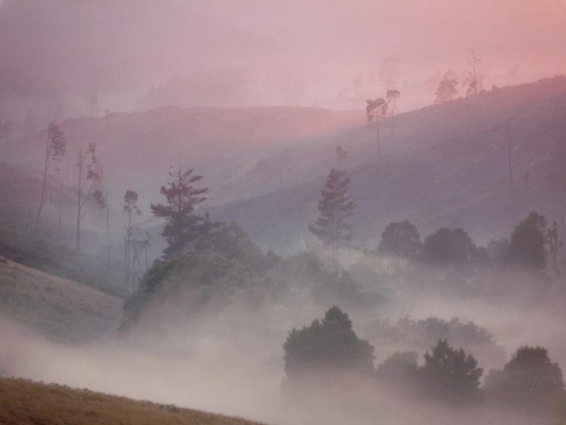 pink filtered light spilling over the ridge